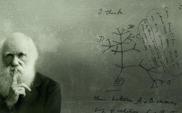 Darwin-I-think