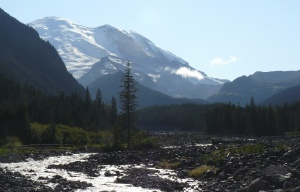 MtRainier12_White-River-Afternoon